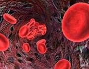 گلبول های قرمز خون