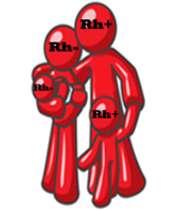 عامل rh