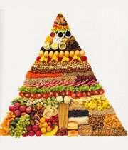 9 منبع تأمین پروتئین برای گیاهخواران