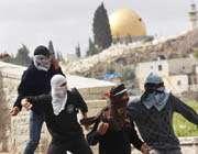уничтожение оккупированных земель палестинцев