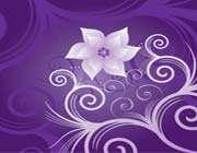 flower_on_violet