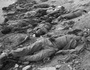 iran-iraq war, martyrs