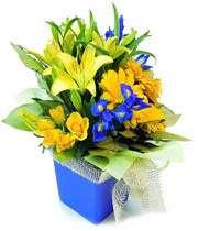 delightful floral box