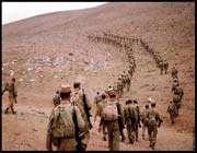 iran-iraq war, soldiers