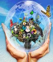طرحی برای پرورش خلاقیت و نوآوری در مدارس