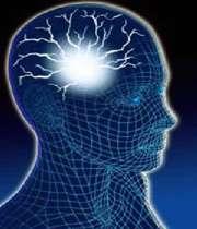 شاخه های مهم روان شناسی