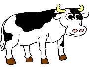 گائے گائے