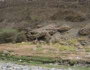 منطقة غدیر