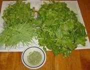 سبزی خشک کردن
