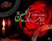 hz. imam ali bin hüseyin (a.s.)