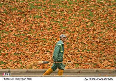 پاییزگردی