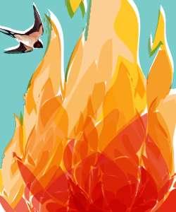 گنجشک و آتش