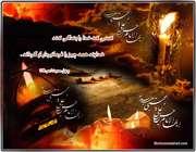 امام مجتبی