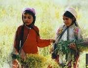 البسه سنتی مردم فارس