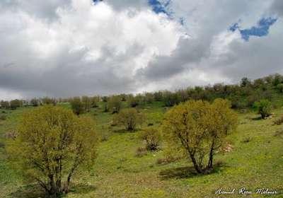 روستای قلعه چشمه