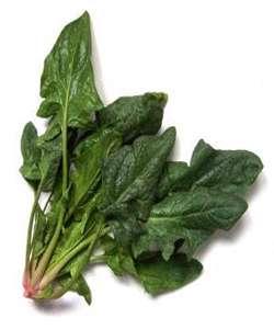اسفناج، یک سبزی مفید