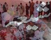 پاکستان ميں شيعوں پر ظلم