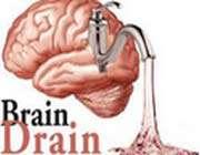 brain draine