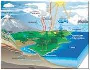مواد تشکیل دهنده خاکها