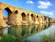 мост дизфуль