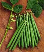 бобы зелёные