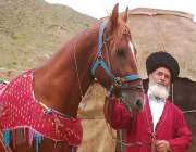 бендер-туркмен