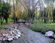 باغ چشمه بلقيس