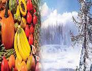 diet in winter
