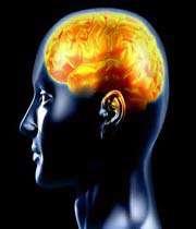 beyin için faydalı yiyecekler