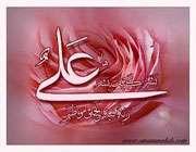 حضرت علی علیه السلام کی جنگیں   ( حصّہ  ہفتم )