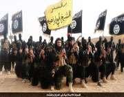امریکہ داعش سے کیا چاہتا ہے
