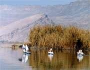 озеро паришан