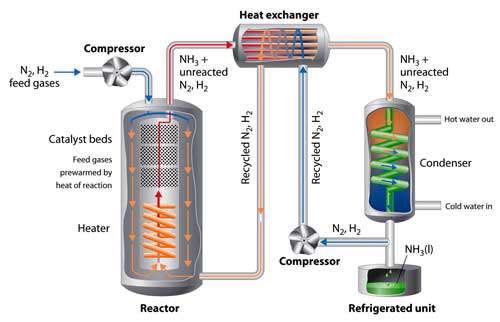 نیتروژن