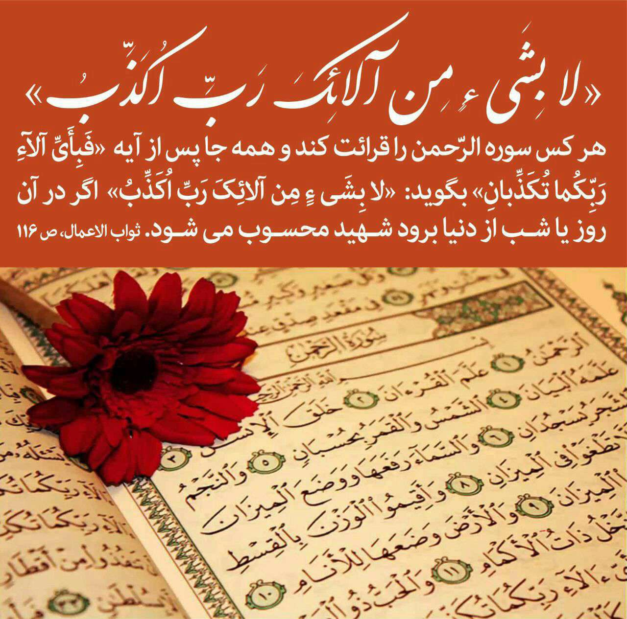 سوره الرحمن و شهادت