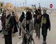 members of the takfiri daesh militant group