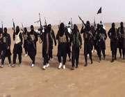 افغانستان میں 70 فیصد داعش پاکستانی طالبان پر مشتمل
