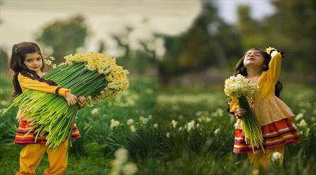 برگزاری پنجمین جشنواره گل نرگس در بهبهان