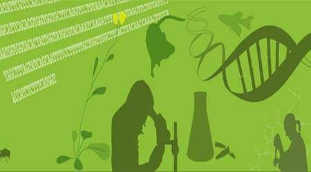 مشاهده میکروسکوپی سلول های گیاهی و جانوری، جلسه اول