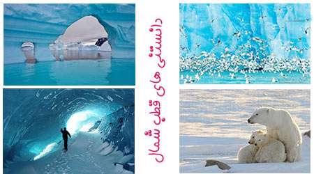 دانستنی های قطب شمال