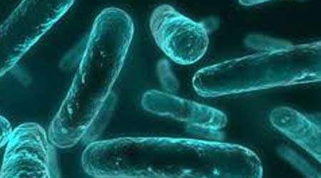 یافتن آنتی بیوتیك های مناسب برای انواع باکتری های بدن، جلسه دهم