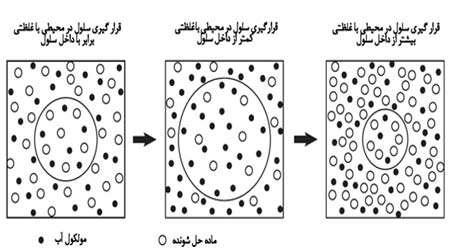 اندازهگیری غلظت سلول های گیاهی و جانوری، جلسه اول