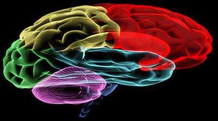حافظه و یادگیری (6)