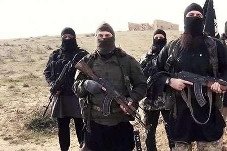 مفتی اعظم سوریه خواستار تلاش بیشتر برای مبارزه با تروریسم شد