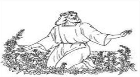 آرزوی ابراهیم و ساره (علیهماالسلام)