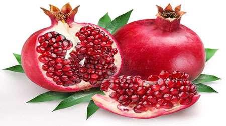 تاثیر عصاره الکلی پوست انار و هسته انگور بر تسریع زمان انعقاد خون
