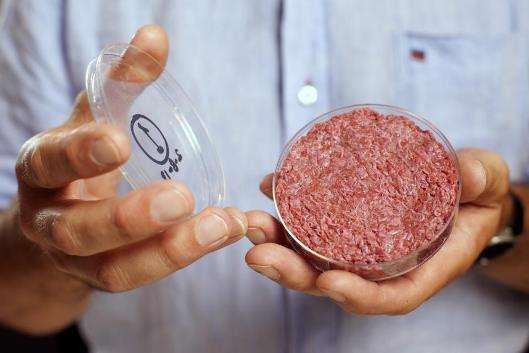 گوشت مصنوعی