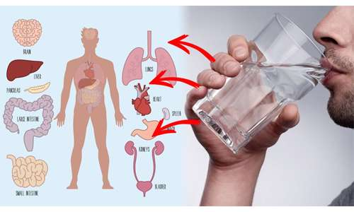 فواید نوشیدن آب گرم