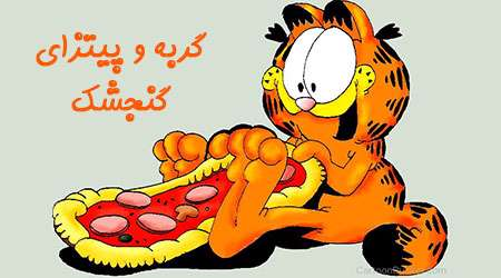 گربه و پيتزاي گنجشک