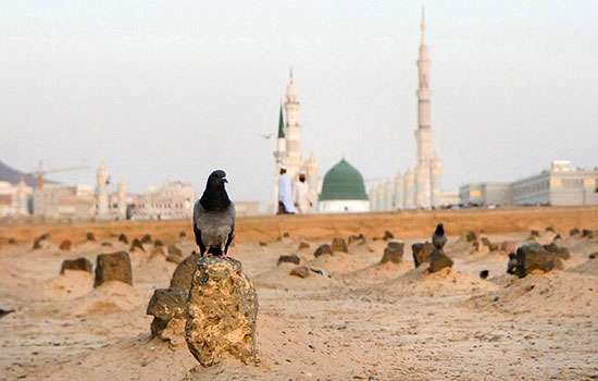 قبر حضرت فاطمه سلام الله علیها کجاست؟