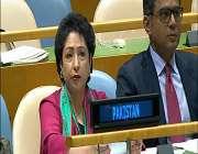 پاکستانی سفیر کا امریکی سفیر